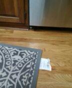 Littleton, CO - Water leak under cabinets