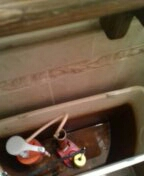 Morrison, CO - Kohler toilet tank repair