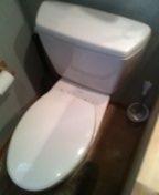 Littleton, CO - Toto toilet repair