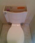 Lakewood, CO - Kohler toilet repair