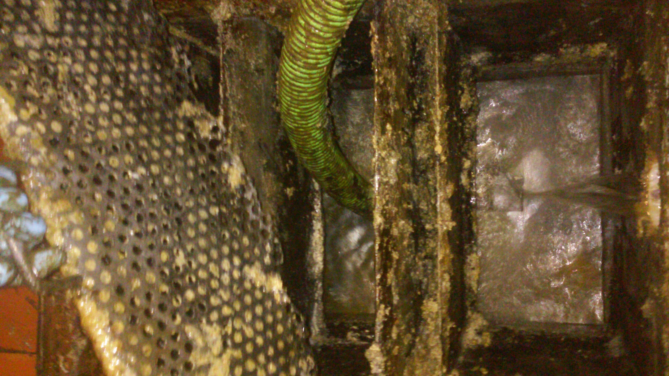 Naperville, IL - Cleaning grease traps. Cleaning lines.