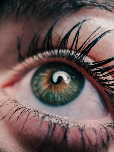 Plaistow, NH - Lash Lift is a procedure that makes your eyelashes curl from the base.