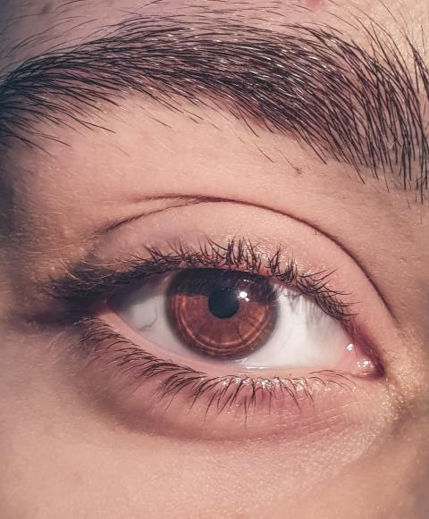 What Is Eyelash Tinting? Read More Here: https://milliondollarbrows.com/eyelashes/