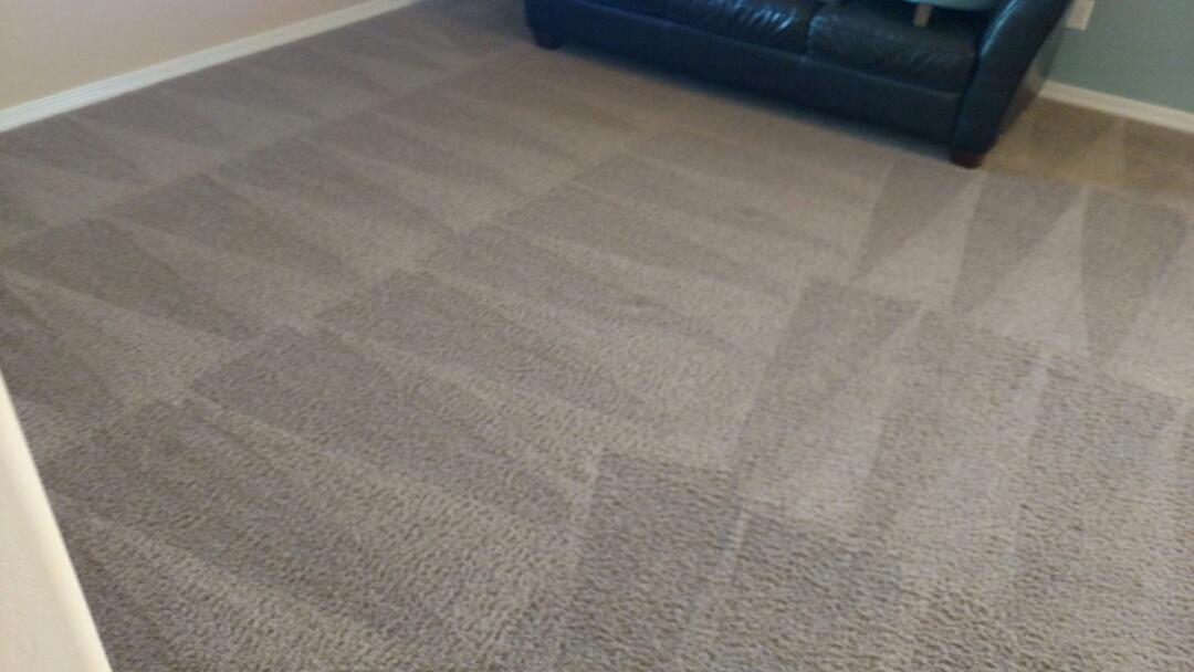 Cleaned carpet for a regular PANDA family in Eastmark, Mesa, AZ.