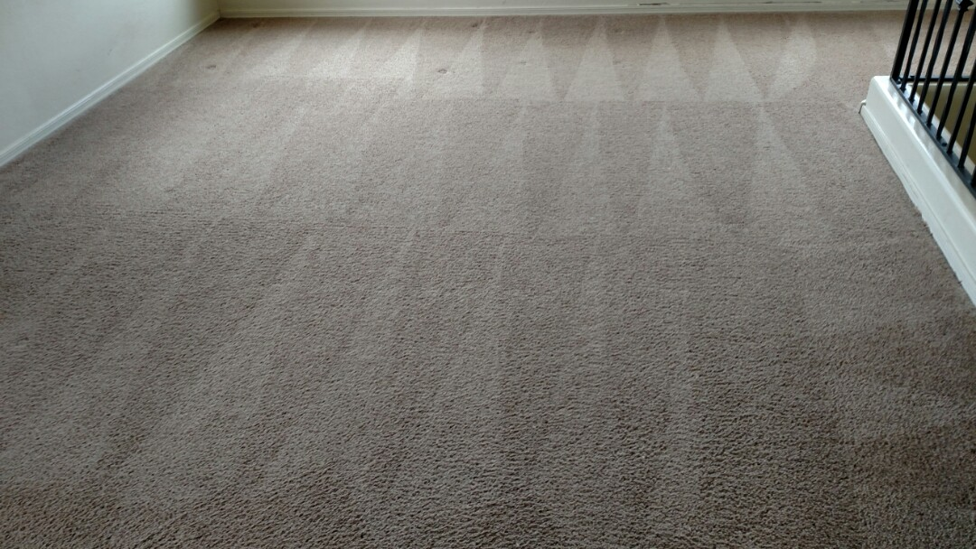 Gilbert, AZ - Cleaned carpet and extracted pet urine for a new PANDA customer in The Gardens, Gilbert, AZ 85296.
