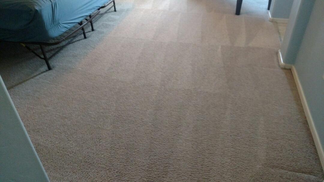 Gilbert, AZ - Cleaned carpet for a new PANDA family in The Gardens, Gilbert, AZ 85296.