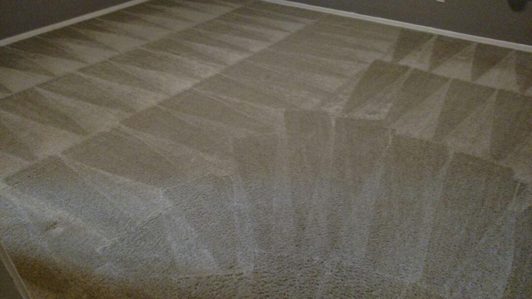 Gilbert, AZ - Cleaned carpet for a new PANDA family in Carol Rae Ranch, Gilbert, AZ 85234.