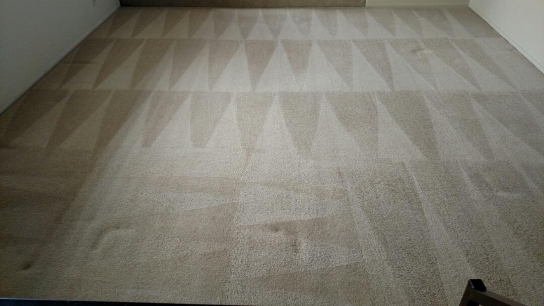 Cleaned carpet for a new PANDA family in Mesa, AZ 85203.