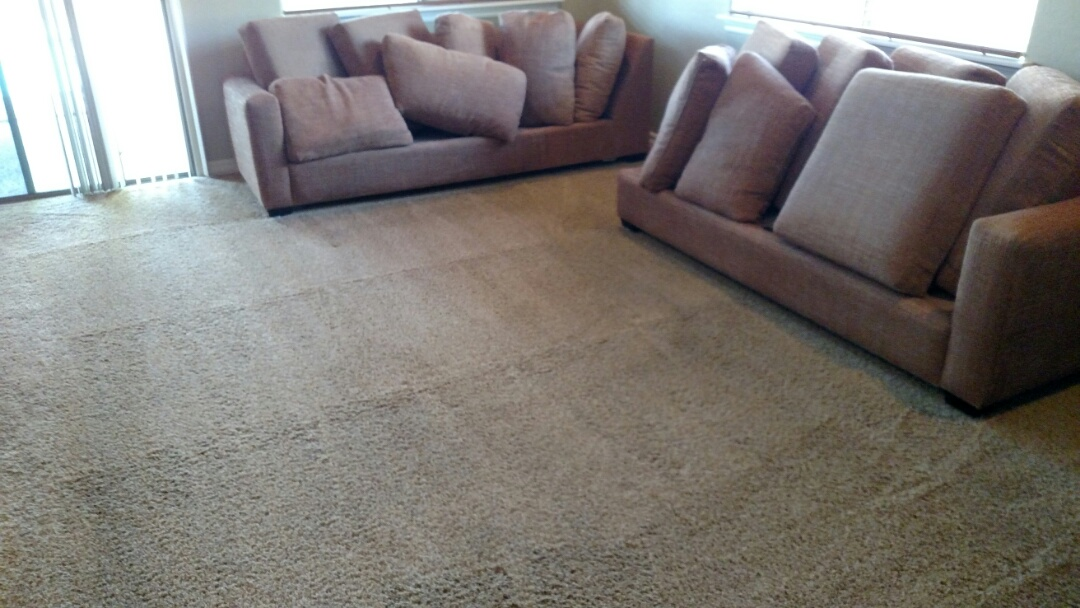 Clean upholstery and extracted pet vomit for a regular PANDA family in Freeman Farms, Gilbert, AZ 85298.