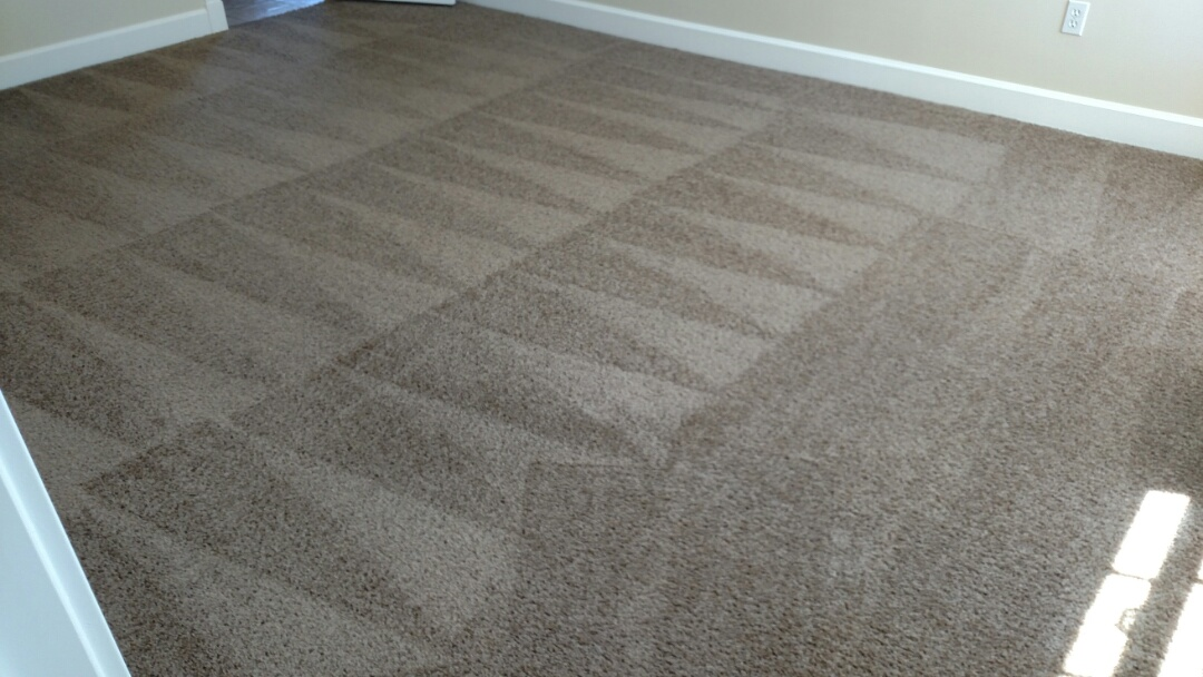 Cleaned carpet for a new PANDA family in Gilbert, AZ 85298.