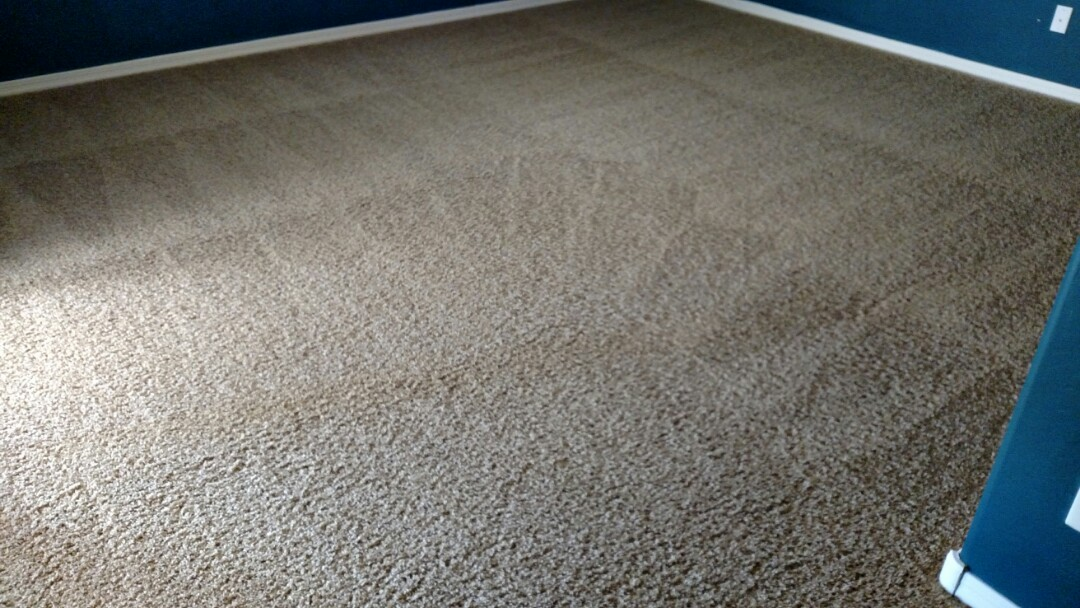 Cleaned carpet for a new PANDA family in Queen Creek, AZ, 85143.