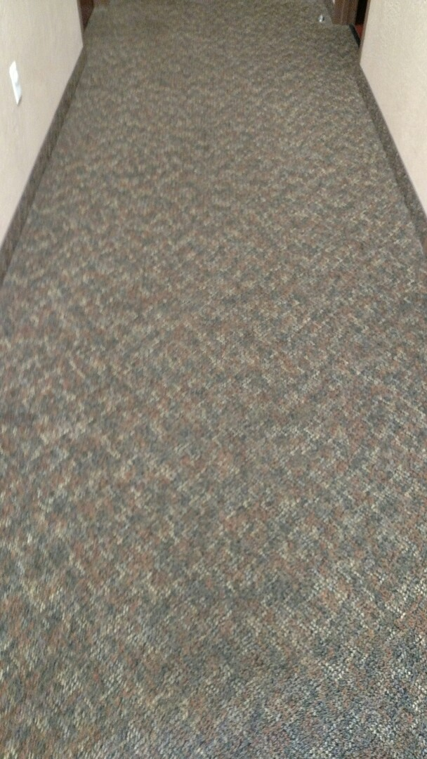 Mesa, AZ - Cleaned commercial carpet for a regular PANDA Physician's office in Mesa, AZ 85206.