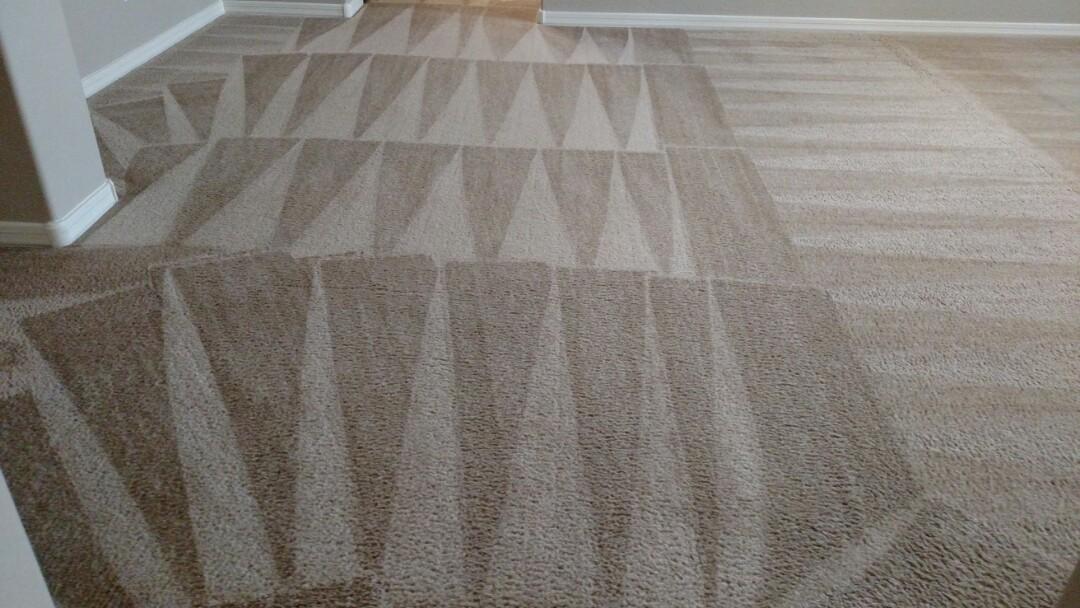 Gilbert, AZ - Cleaned carpet for a regular PANDA family in Gilbert, AZ 85298.