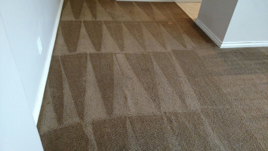 Cleaned carpet for a new PANDA customer in Apache Junction, Az 85120.