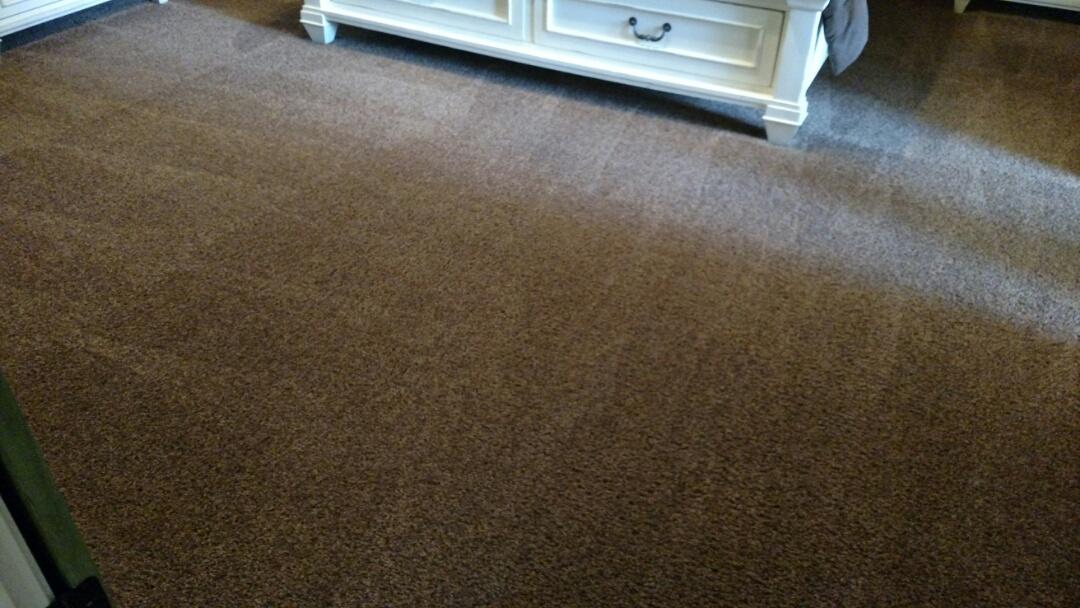 Gilbert, AZ - Cleaned carpet for a regular PANDA family in Ashley Heights, Gilbert, AZ 85295.
