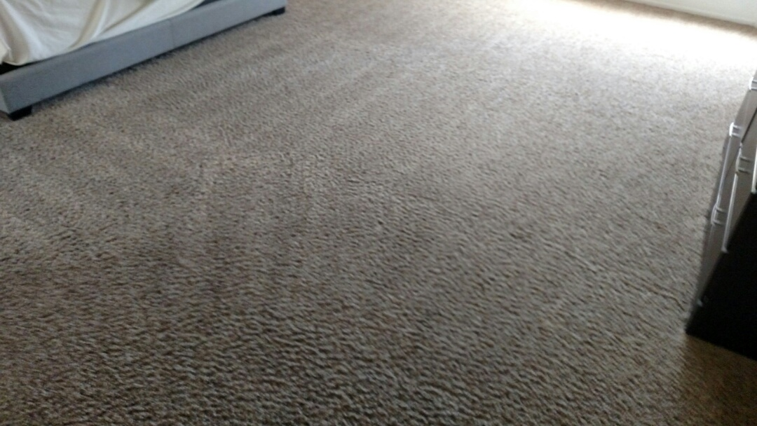 Cleaned carpet for a new PANDA family in Chandler, AZ 85248.