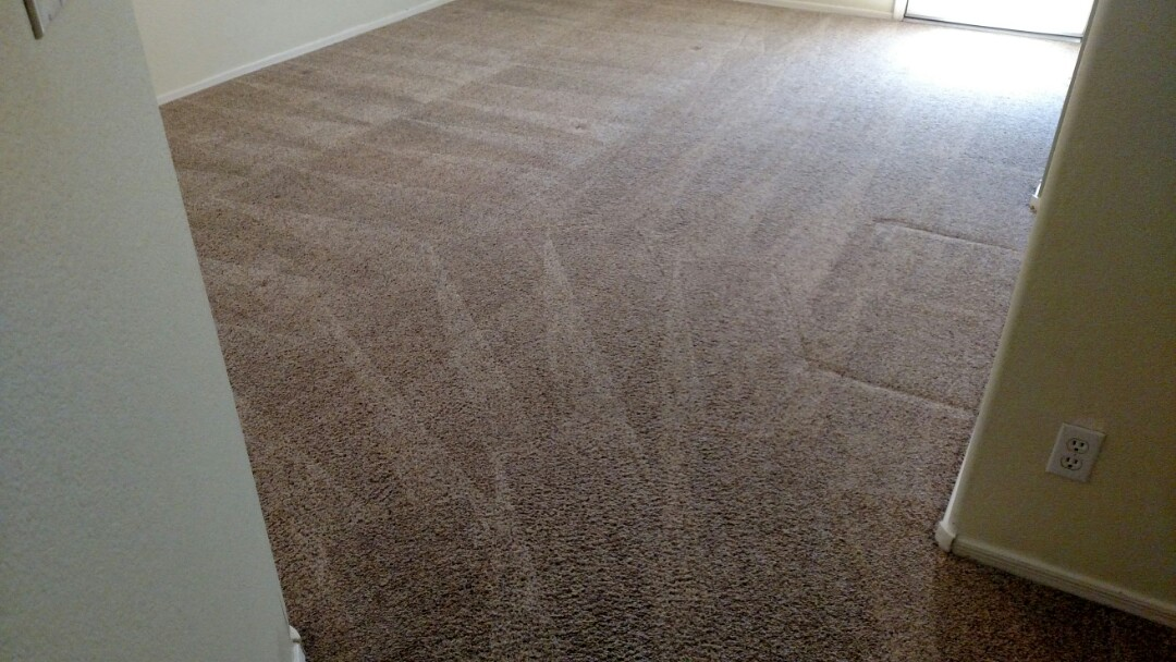 Cleaned carpet for a new PANDA family in Chandler, AZ.