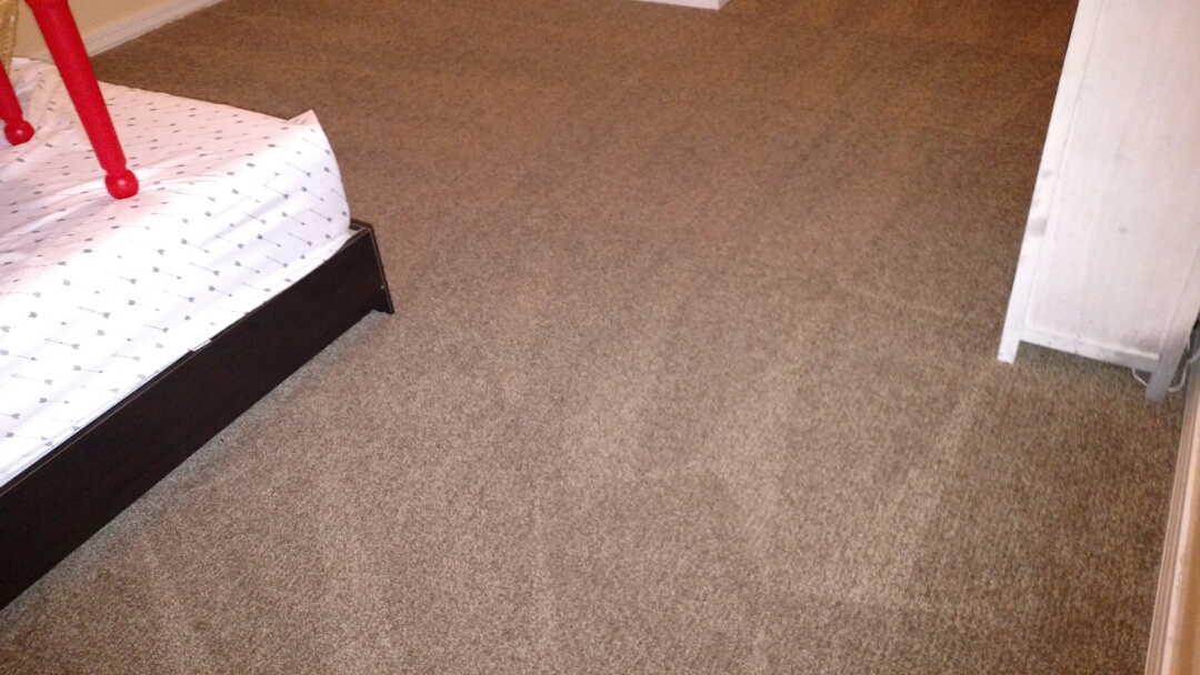 Cleaned carpet and extracted dog urine for a new PANDA family in Gilbert, AZ 85298.