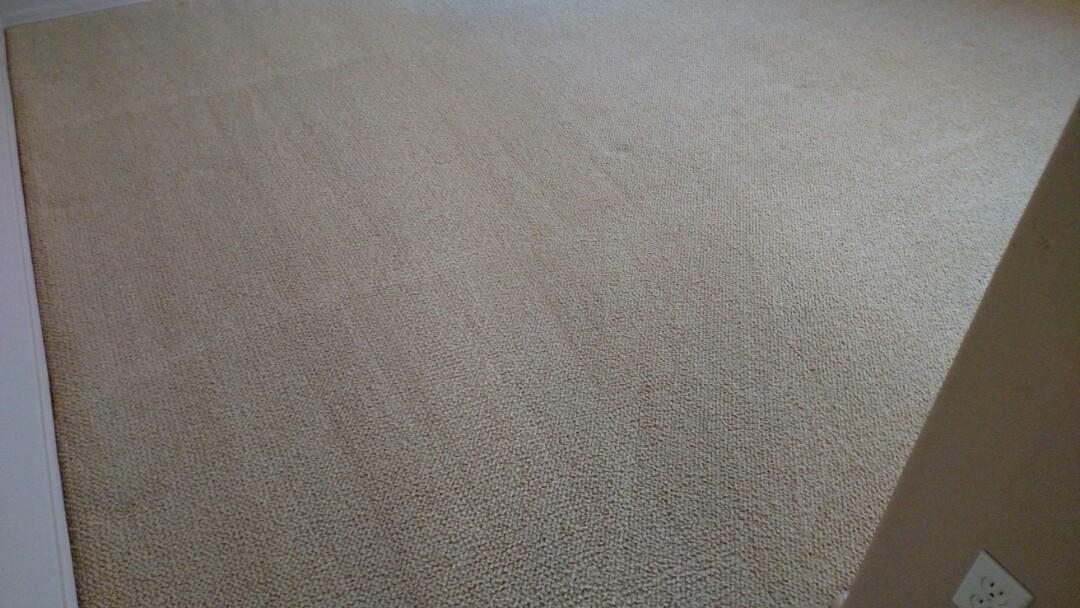 Cleaned carpet, tile & grout for a regular PANDA family in Gilbert, AZ 85295.