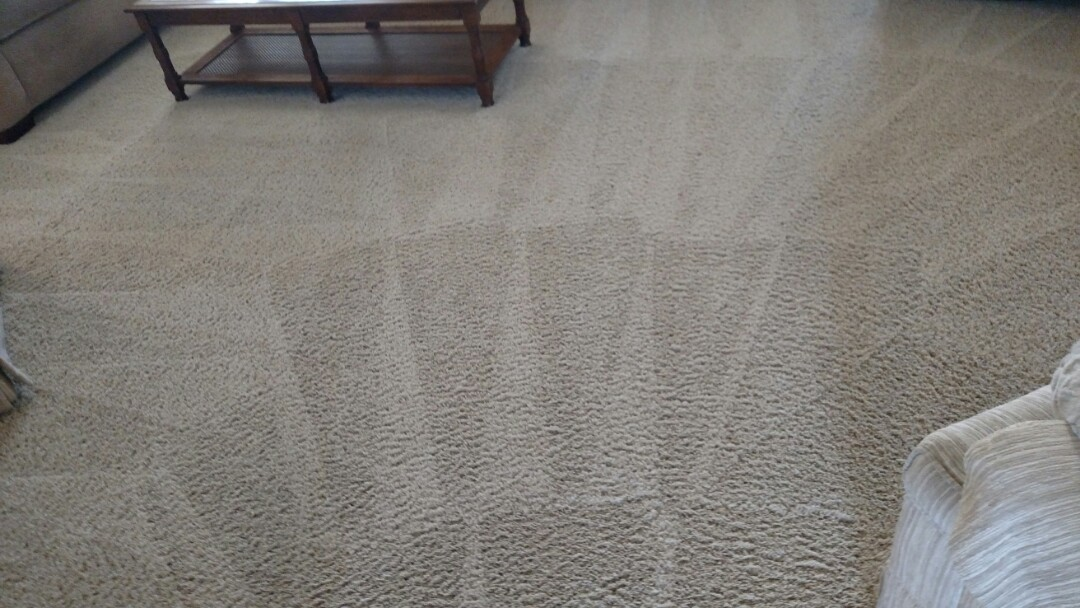 Chandler, AZ - Cleaned carpet and extracted pet urine for a new PANDA customer in Chandler, AZ, 85249.