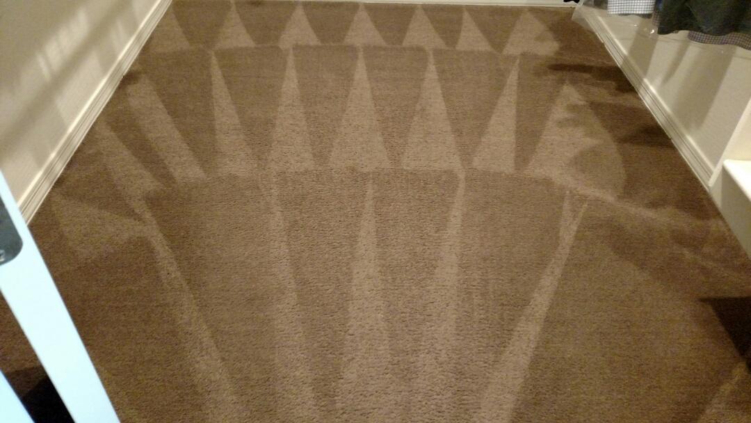 Cleaned carpet for a new PANDA family in Lyon's Gate, Gilbert, AZ 85295.