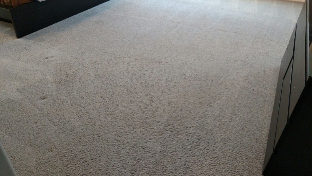 Gilbert, AZ - Cleaned carpet and extracted pet urine for a regular PANDA family in Gilbert, AZ 85298.