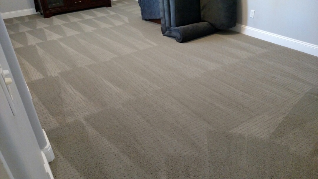 Best Carpet Cleaning Gilbert Az Client Reviews Panda