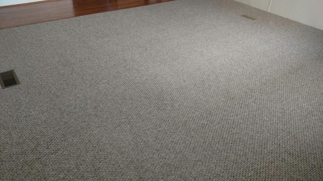 Cleaned carpet for a new PANDA customer in Mesa, AZ 85206.