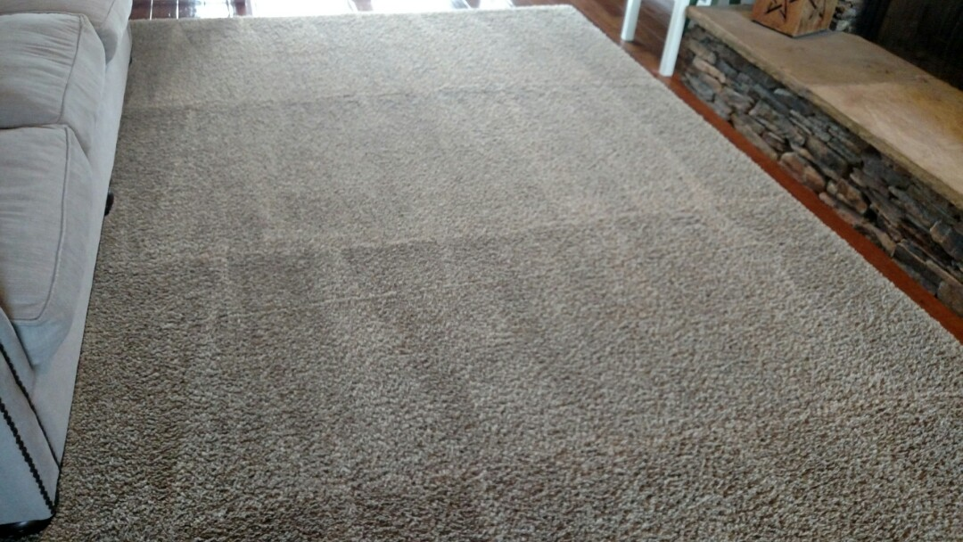 Cleaned carpet, area rugs and extracted pet urine for a regular PANDA family in Scottsdale, AZ 85260.