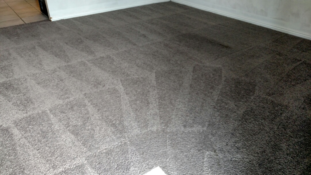 Cleaned carpet and tile for a regular PANDA customer in Ahwatukee, AZ 85048.