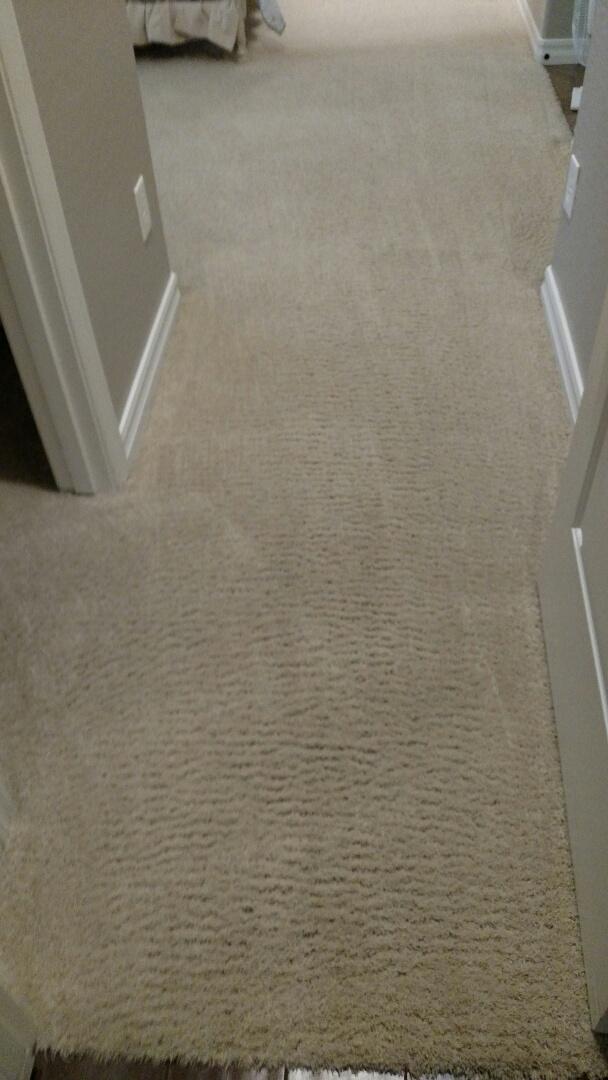 Gilbert, AZ - Cleaned carpet and extracted pet urine for a regular PANDA customer in Freeman Farms, Gilbert, AZ 85298.