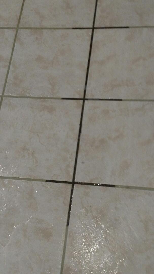 Gilbert, AZ - Cleaned carpet, tile & grout for a new PANDA family in Gilbert, AZ 85296.