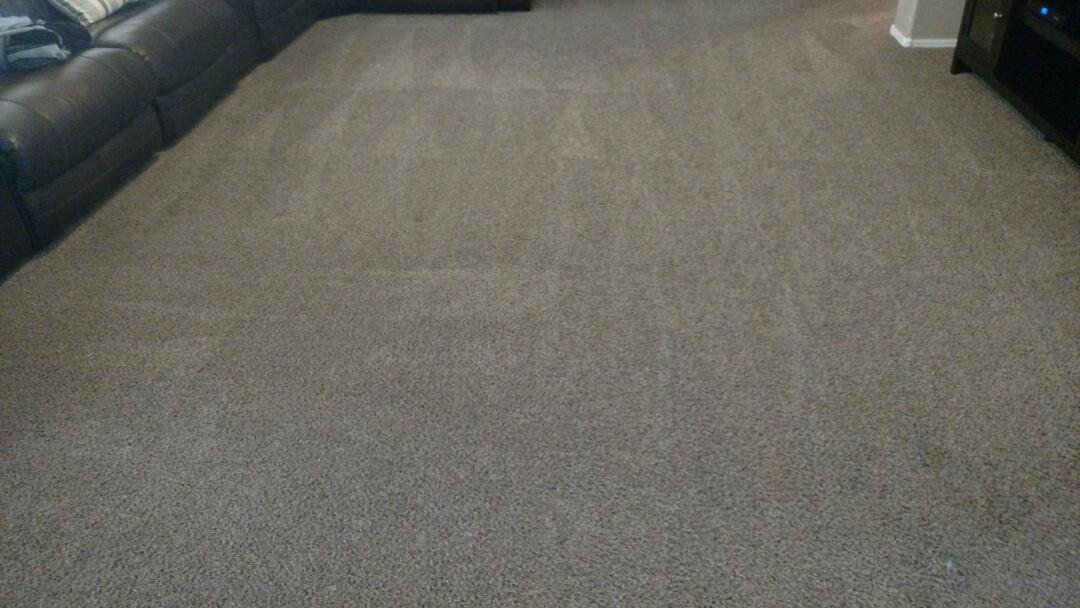 Gilbert, AZ - Cleaned carpet for a regular PANDA family in Gilbert, AZ 85295.