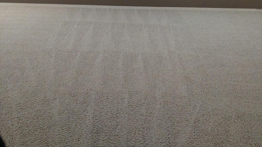 Gilbert, AZ - Cleaned carpet, tile & grout for regular Panda Family and The Gardens, Gilbert, AZ 85296.