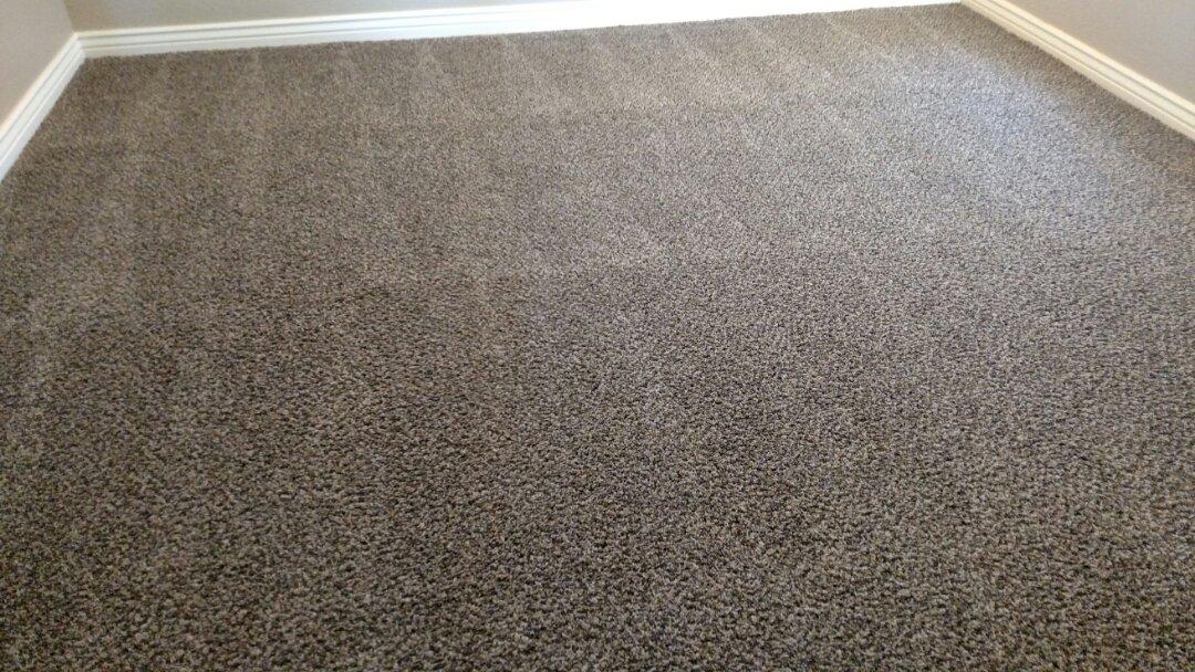 Gilbert, AZ - Cleaned carpet and an area rug for a new PANDA family in Gilbert, AZ 85295.