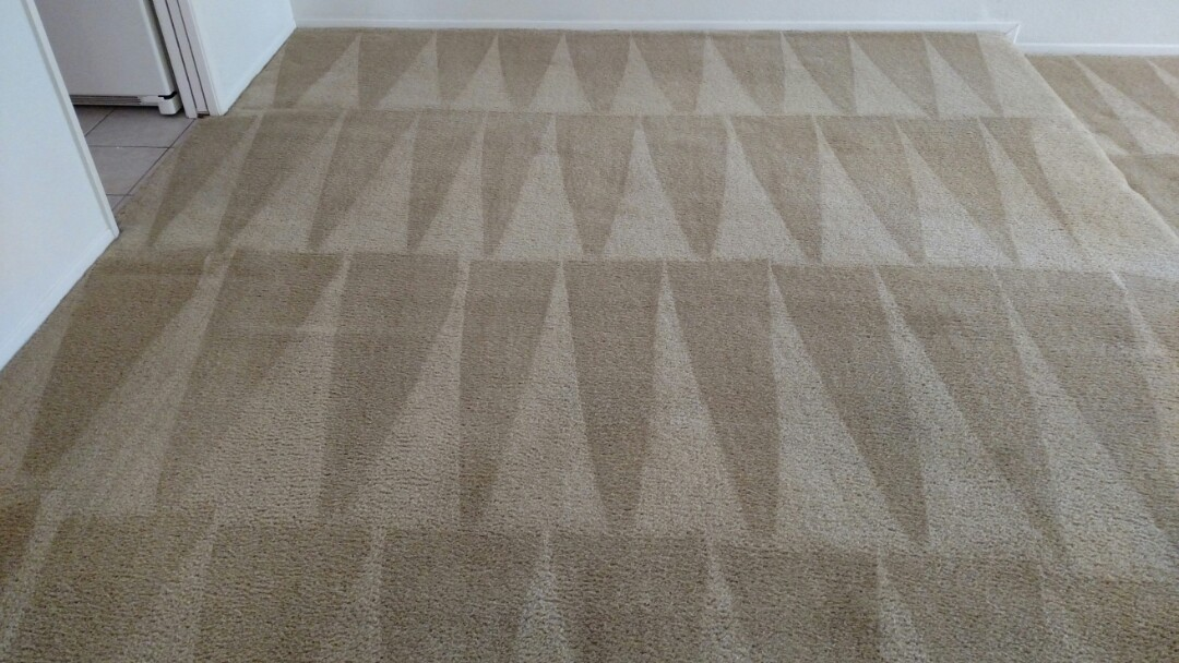 Cleaned carpet for a regular PANDA customer and Ahwatukee, AZ 85044.