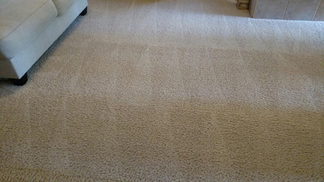 Gilbert, AZ - Cleaned carpet for a regular PANDA family in Gilbert, AZ 85296.