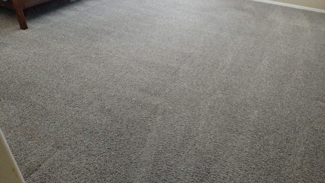 Gilbert, AZ - Cleaned carpet for a new PANDA customer in Gilbert, AZ 85295.