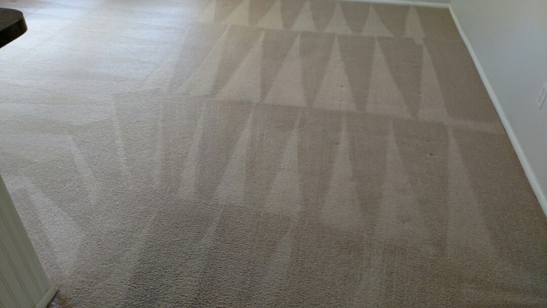 Mesa, AZ - Cleaned carpet for a regular PANDA family in Mesa, AZ 85203.