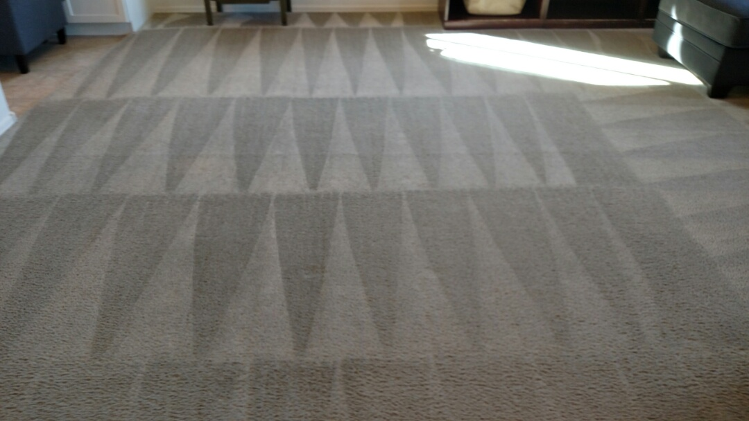 Cleaned carpet for a regular PANDA family in Queen Creek, AZ 85142.
