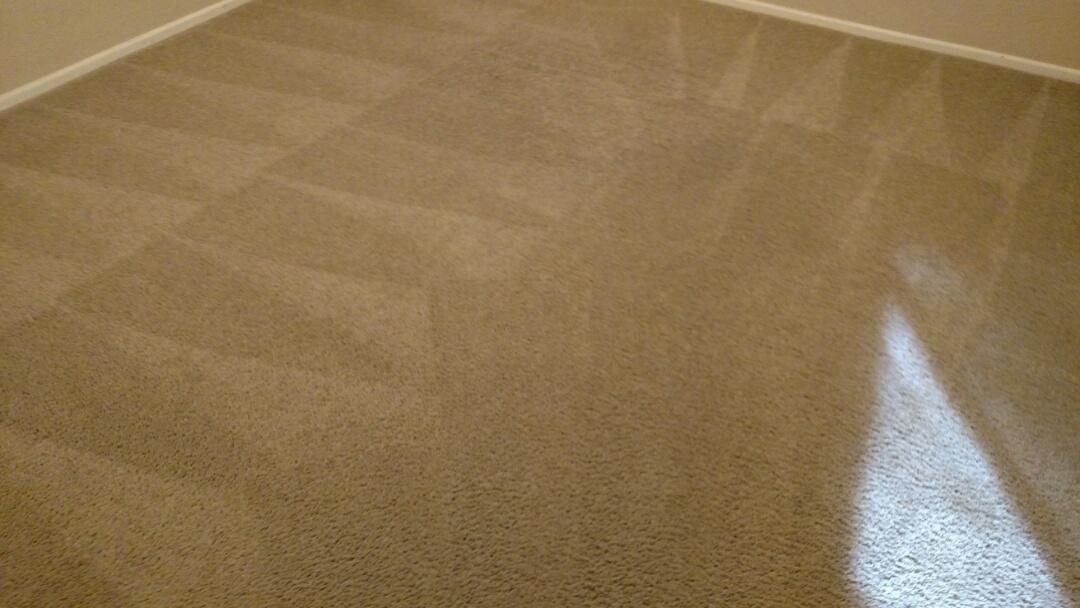 Chandler, AZ - Cleaned carpet for a regular PANDA customer in Chandler, AZ 85224.