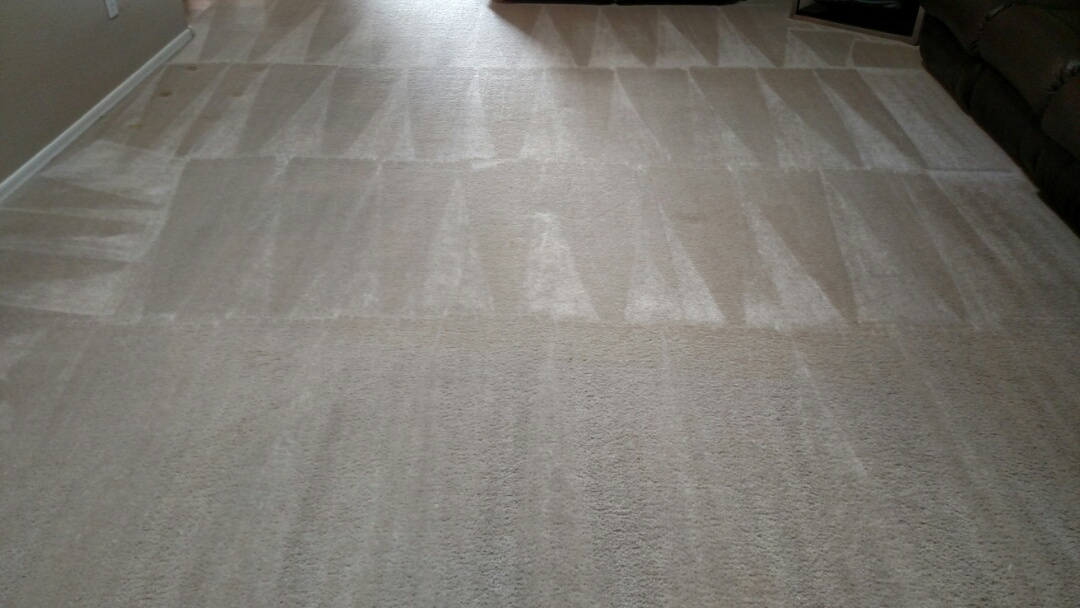 Cleaned carpet, extracted pet stains and fur for a regular PANDA Family in Chandler, AZ 85226.