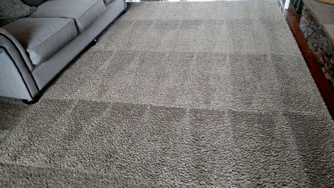 Cleaned carpet, area rugs & extracted pet urine for a regular PANDA family in Scottsdale, AZ 85260.