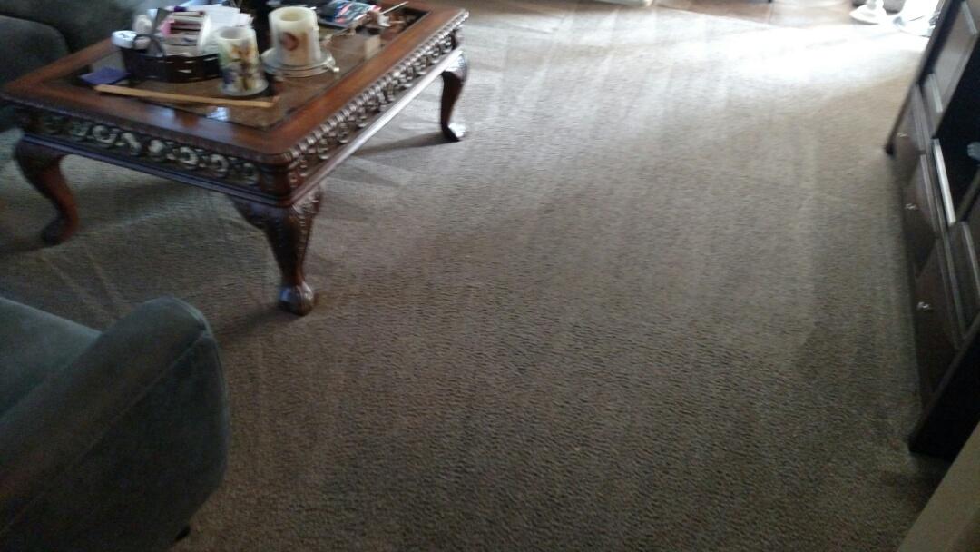 Gilbert, AZ - Cleaned carpet for a new PANDA family in Spectrum, Gilbert, AZ 85295.