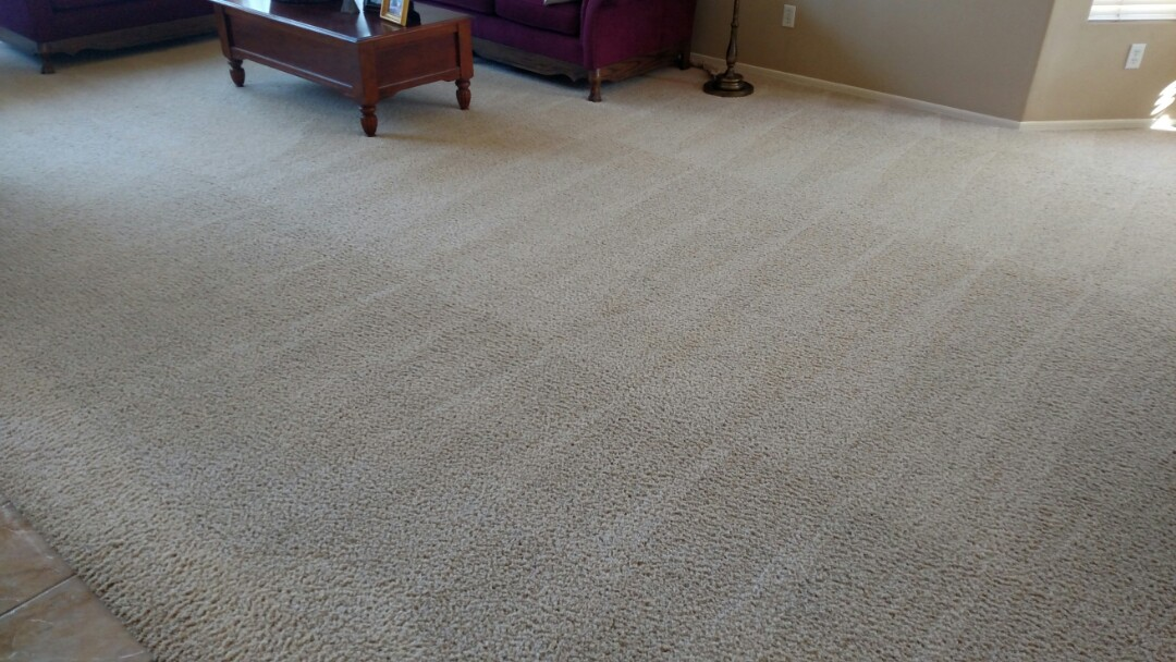 Gilbert, AZ - Cleaned carpet for a regular PANDA family in Finley Farms, Gilbert, AZ 85296.