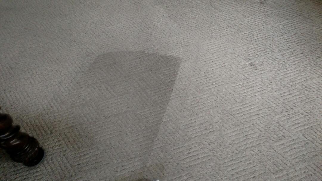Chandler, AZ - Cleaned carpet for a regular PANDA family in Chandler, AZ 85286.
