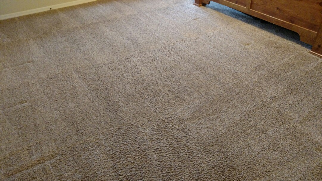 Cleaned carpet for a regular PANDA family in Orchard Park, Queen Creek, AZ 85142.