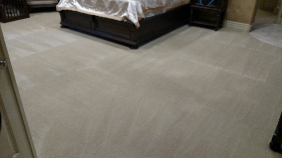 Mesa, AZ - Cleaned carpet and extracted pet urine and feces for a regular PANDA family in Mesa, AZ 85207