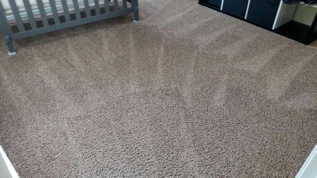 Cleaned carpet and tile for a regular PANDA family in Queen Creek, AZ 85142.