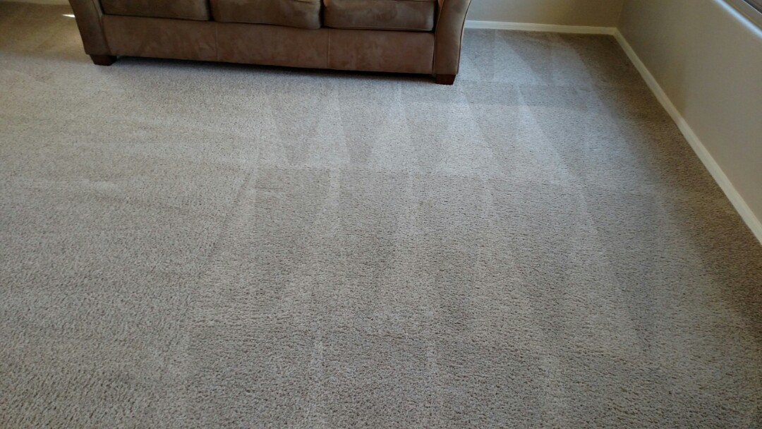 Mesa, AZ - Cleaned carpet & tile for a new PANDA family in Mesa, AZ 85206.
